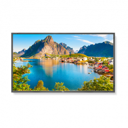 NEC Display E805-80 inch LED Backlit Commercial-Grade Display