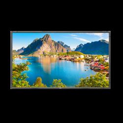 NEC Display E805-80 inch LED Backlit Commercial-Grade Display