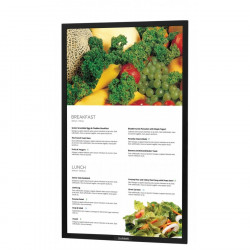 "Sunbrite 49"" Pro Series Outdoor Digital Signage – Full Sun & Active Areas – Portrait Orientation – DS-4917P"