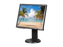 NEC EA192M 19IN LCD Monitor 1280X1024 VGA/ Dvi-d Spkr Blk Cabinet